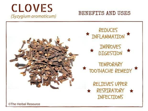Cloves benefits and uses as herbal medicine