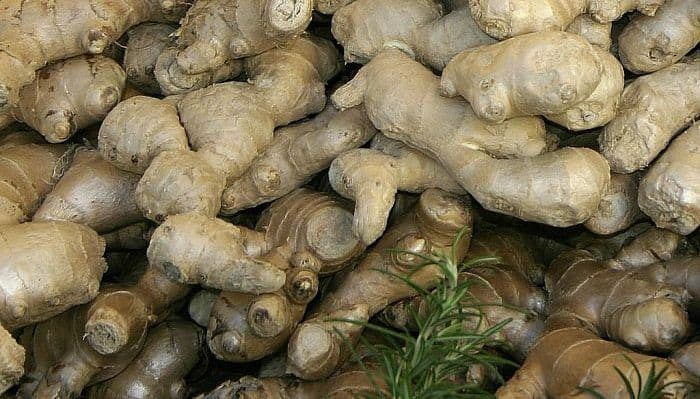 Ginger Roots as Herbal Medicine