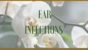 herbal ear infections remedy