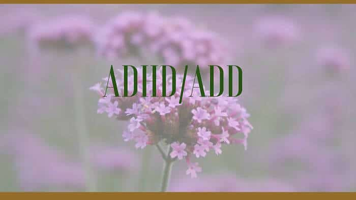 adhd add herbal treatments