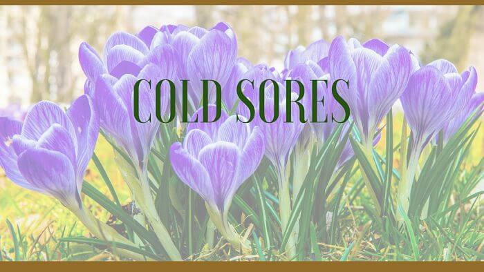 Cold sores herbal remedies