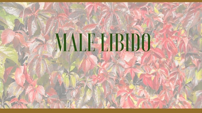 male low libido herbs