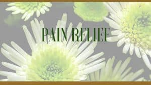 pain relieving plants