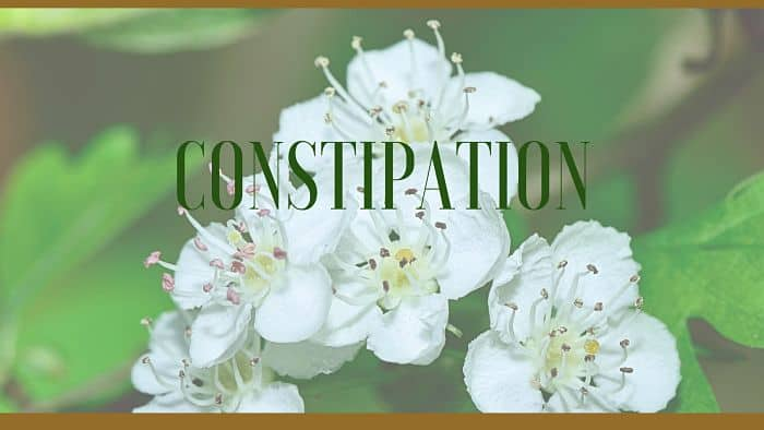 constipation herbal remedies