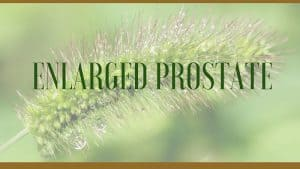 Enlarged Prostate Remedies