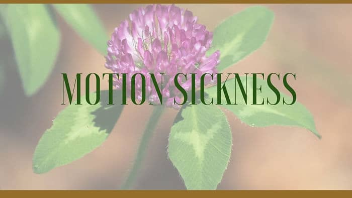 motion sickness remedies