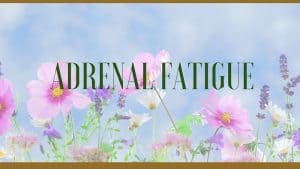 adrenal fatigue herbal remedies